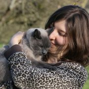 How to Have a Great Summer with Your Cat   Hastings Veterinary Hospital