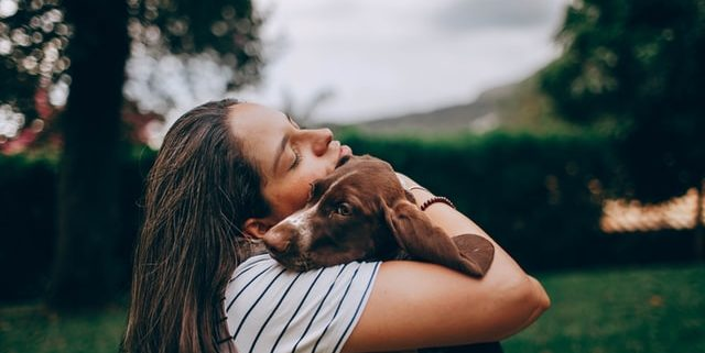 The Healing Power Between Humans and Their Pets | Hastings Veterinary Hospital