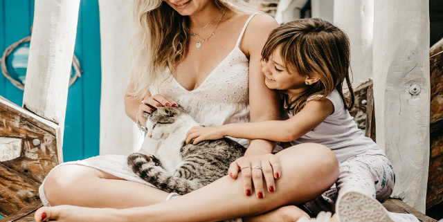 How to Teach Your Child to be Gentle with Pets | Hastings Veterinary Hospital